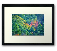 Autumn in the Hills    (PC) Framed Print