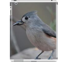 Tufted titmouse with a sunflower seed iPad Case/Skin