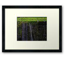 Borealis mallards ...photo by Robert Skelly , added Framed Print