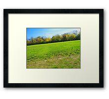 Old Baseball field Framed Print