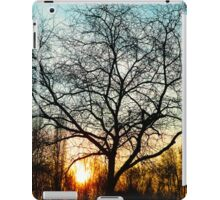 Winter Afternoon iPad Case/Skin