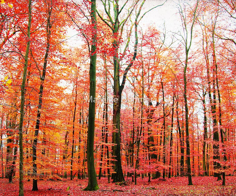 Autumn 2 by Mareike Böhmer