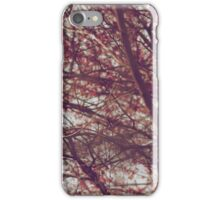 paisaje primavera IPhone case iPhone Case/Skin
