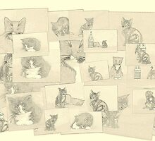 Kitten sketch collage by Christopher Ware