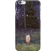 Brand New - Daisy iPhone Case/Skin