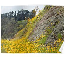 yellow flowers on road side Poster
