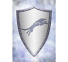 Stark Shield - Clean Version Photographic Print