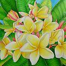 Hawaiian Frangipani by joeyartist