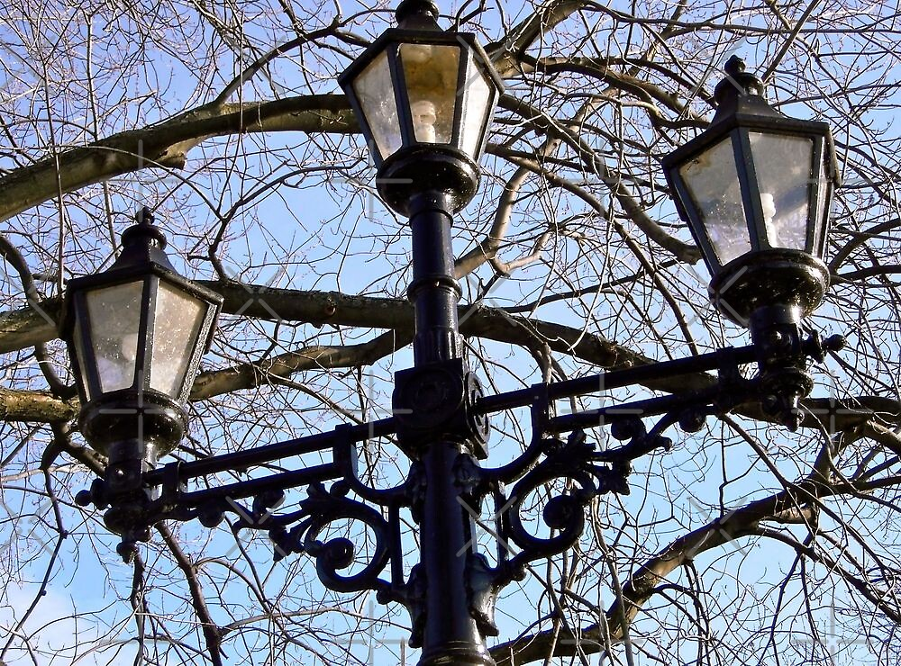 Streetlight by Shulie1