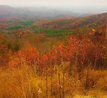 North Georgia Mountains by Scott Mitchell