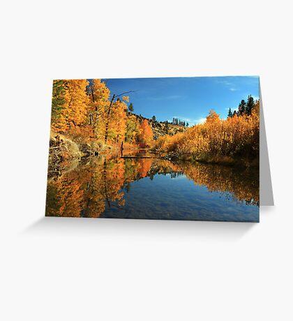 Susan River 11-3-12 Greeting Card