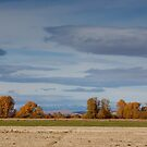 Bozeman to the west by Rob  Holcomb