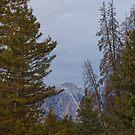 Bridger Mountains, Montana  by Rob  Holcomb