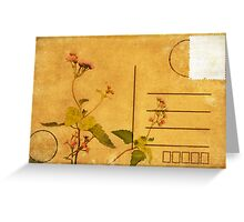 floral pattern on postcard Greeting Card