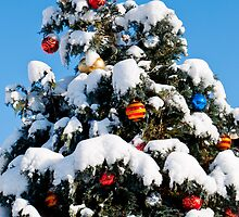 Decorated Christmas Tree by Michael Brewer
