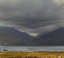 Shieldaig Peninsula #1 by Jamie  Green