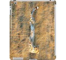 cheetah pad iPad Case/Skin