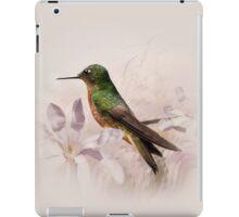 Pechicastaños iPad Case iPad Case/Skin