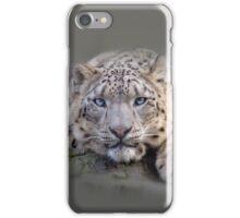 Vishnu Snow Leopard iPhone and iPod Cases iPhone Case/Skin