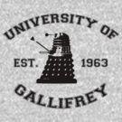 University Of Gallifrey by stevebluey