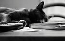 Take a break by Anne Staub