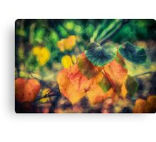 Autumn Leaves        (ED) Canvas Print