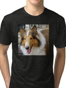 Collie Tri-blend T-Shirt