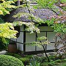 A Little Piece Of Japan by Carla Maloco