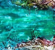 Coral Reef by RedBallooon