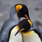 King Penguins in Love iPad Case by Krys Bailey