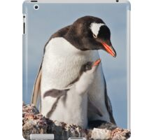 Flying Gentoo Chick iPad Case iPad Case/Skin