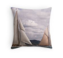 Cambria and Lulworth Throw Pillow