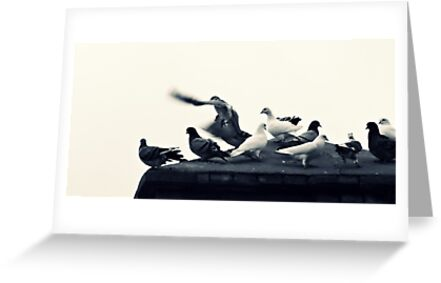 The Landing ... by Berns