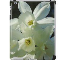 Daffodils 1 iPad Case/Skin