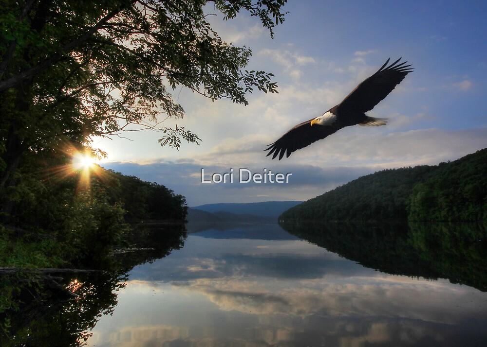 A New Beginning by Lori Deiter