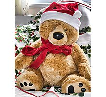 Teddy's Ready For Christmas Photographic Print