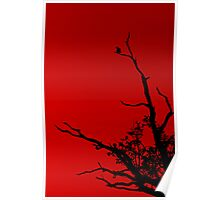 Bird Red Poster