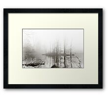 Just this morning at the pond Framed Print