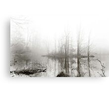Just this morning at the pond Canvas Print
