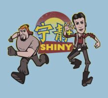 Shiny! by nikholmes