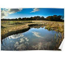 Betty's Wood Ponds in Autumn Poster