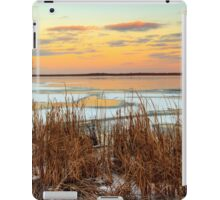 Sunset at Emiquon National Wildlife Refuge iPad Case/Skin