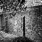 A Wall Along a Path in Southwark by Aaron Holloway