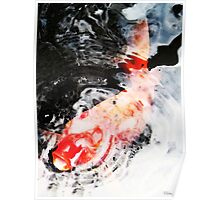 Asian Koi Fish - Black White And Red Poster