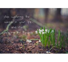 stop watering the weeds in your life and start watering the flowers Photographic Print
