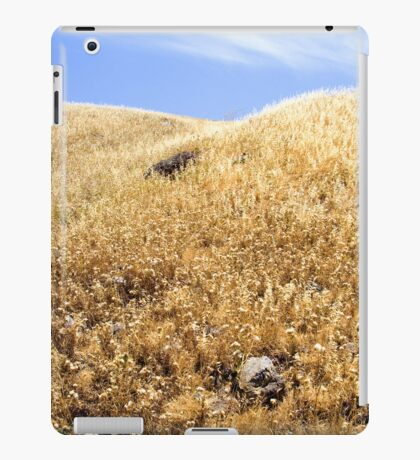 Field iPad Case/Skin