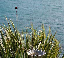 Birdbath amongst leaves in a coastal garden, Salcombe, Devon, UK by silverportpics