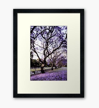 ~ purple rain ~ Framed Print