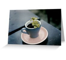 Cup an Saucer Greeting Card