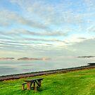 Moray Firth  by Steve